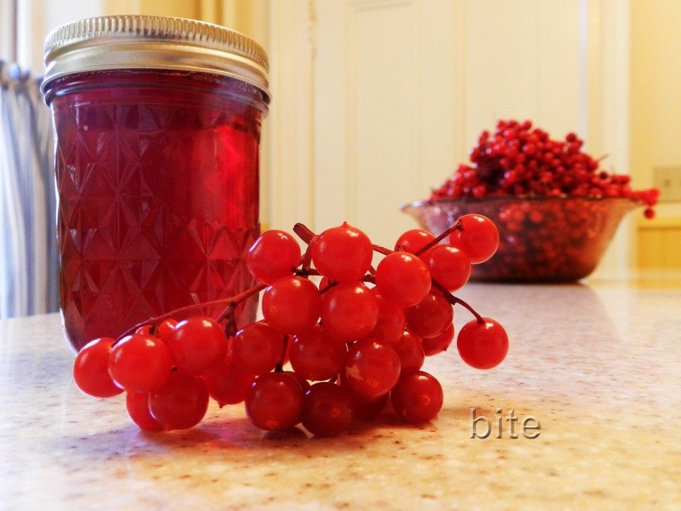 High Bush Cranberry Jelly and my little red shoes