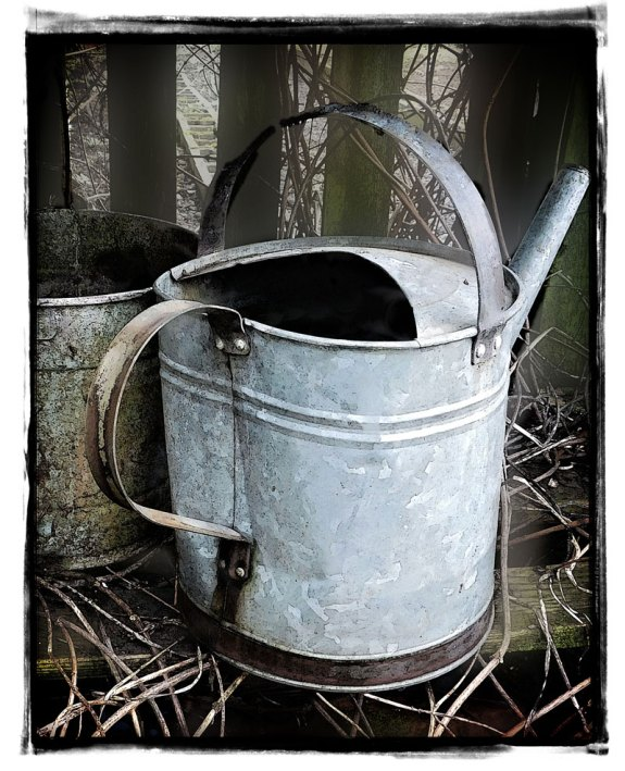 I have a thing for old watering cans