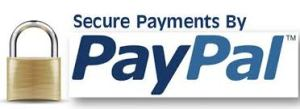 Advertise with Biz X magazine. Pay with Paypal