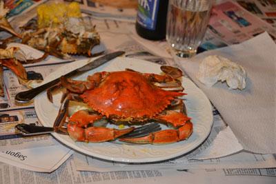 028_crab.jpg