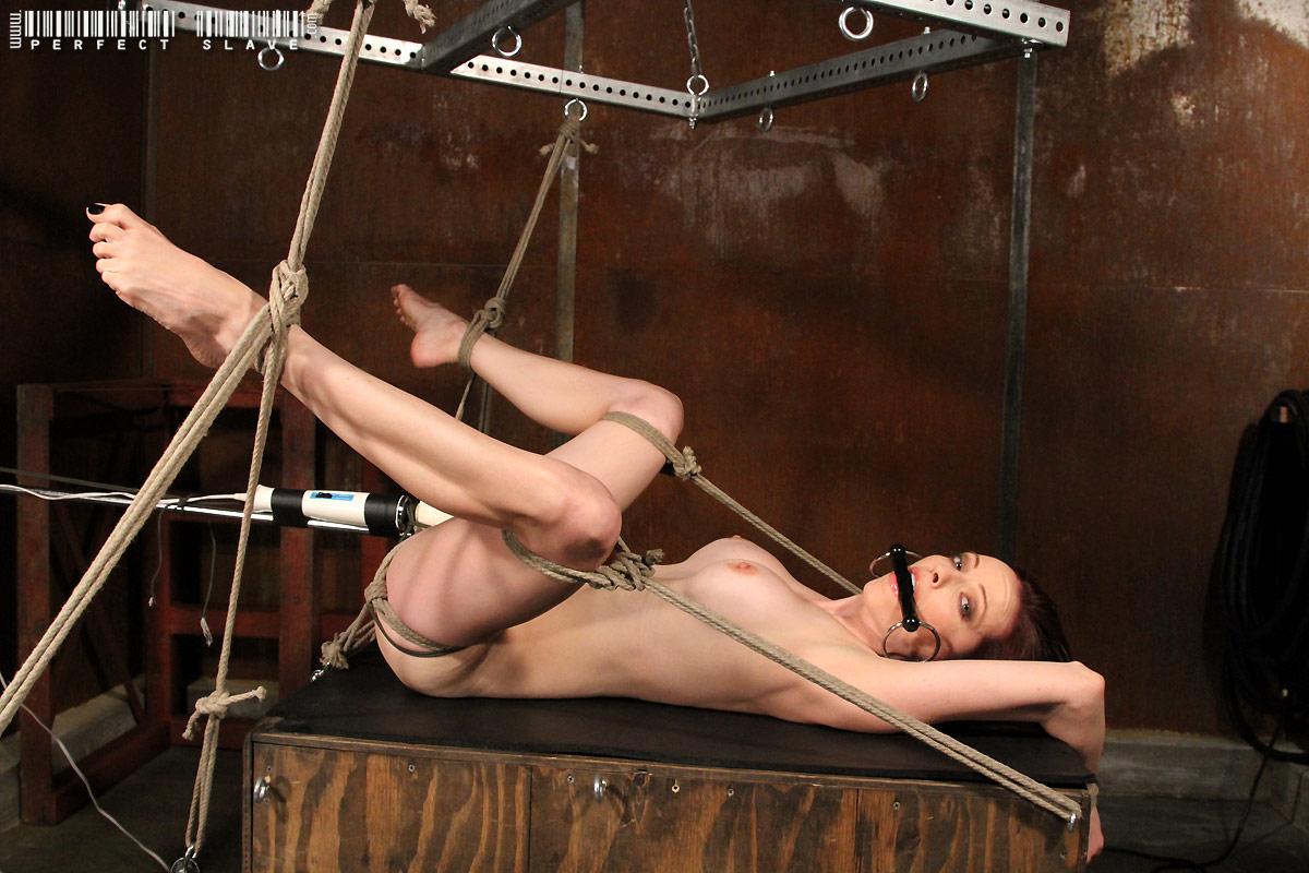 molly matthews bondage