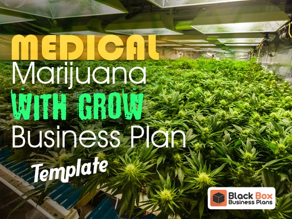 Medical Marijuana Excel Archives Black Box Business Plans
