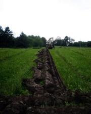 Midsummer-Plowing