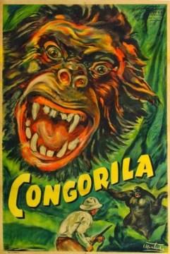 Congorilla - R40s - VENTURI
