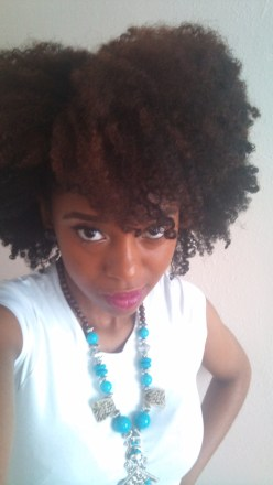 laila-natural-hair-style-icon-update