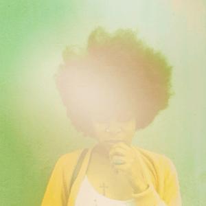 photo-445