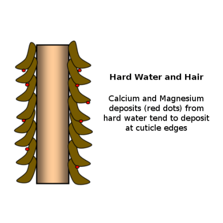 how-hard-water-scientifically-affects-natural-hair