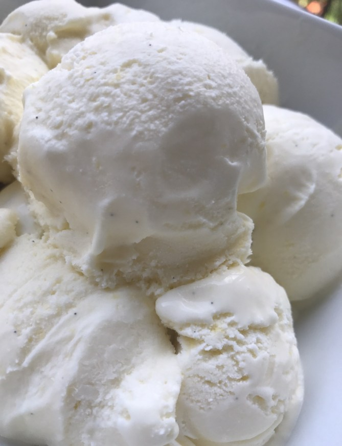 Vanilla Bean Frozen Custard