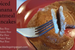 Spiced Banana Oatmeal Pancakes – Soy Fat Nut & Gluten Free