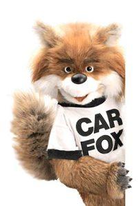 car-fox