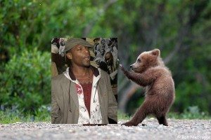 grizzly-bear-vs-dead-prez2