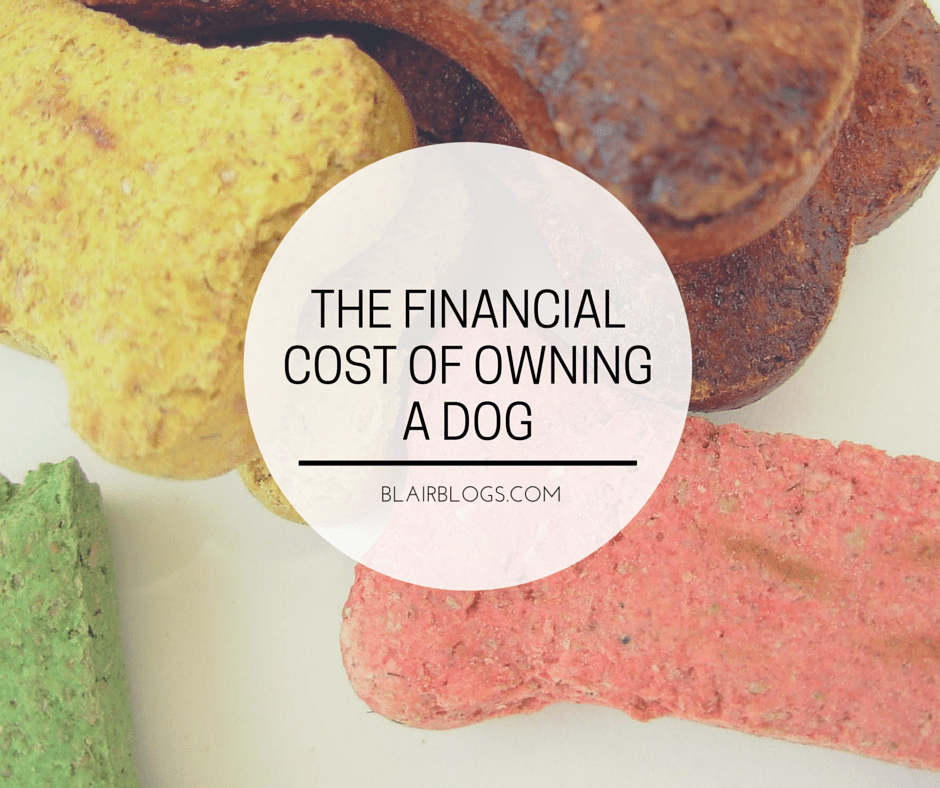 The Financial Cost of Owning a Dog