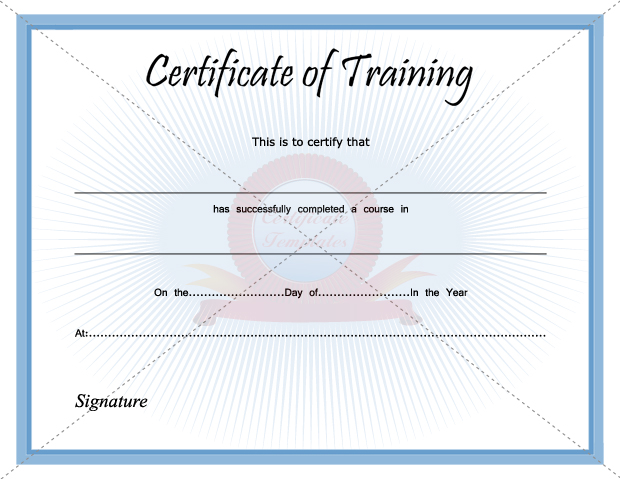 Training Certificate Template PDF Blank Certificates