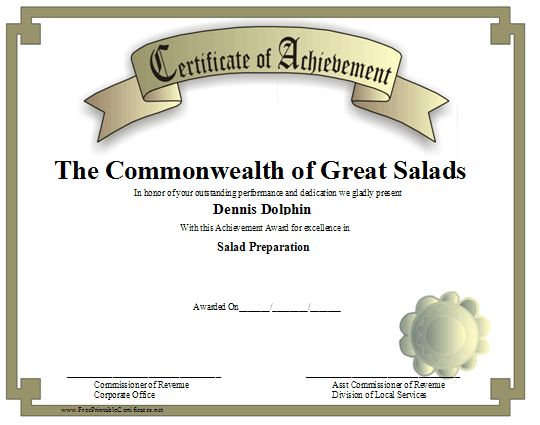 15 Professional Certificate of Achievement Templates Blank - blank achievement certificates