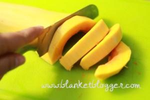 butternut squash (5)