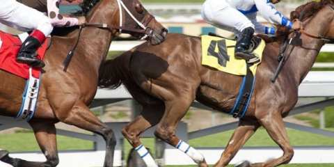 """Enjoy a day at the track with David Milch's latest HBO drama, """"Luck"""""""
