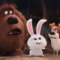 The Secret Life of Pets - Review
