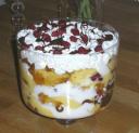 Eryn's Nutella Trifle