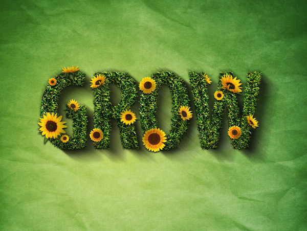 GROW - Thanks for the use of the image, Tim!