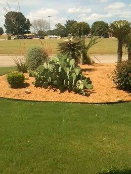 garden-aggregate
