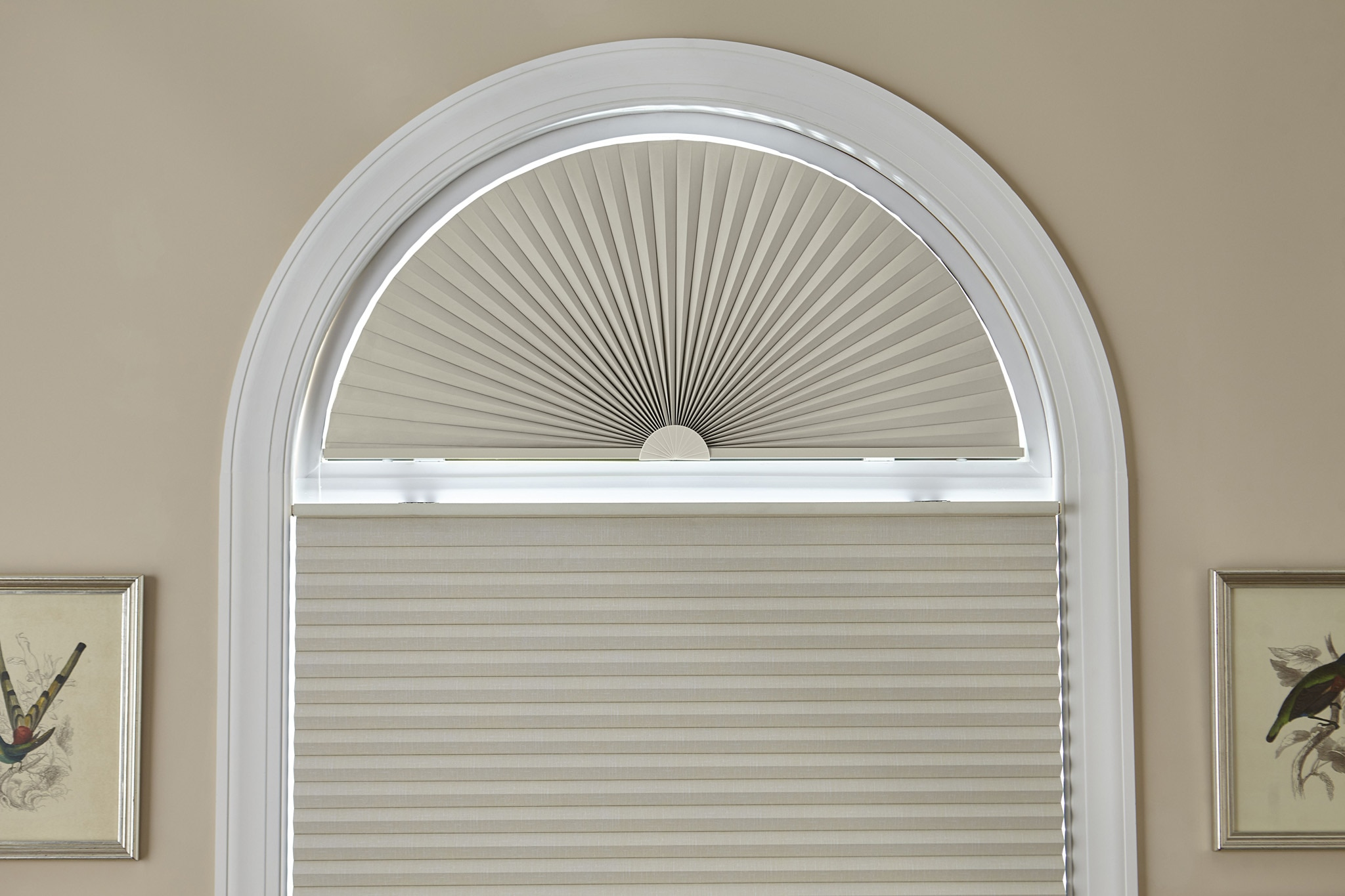 Houzz Home Office Signature Blackout Cellular Arch | Blinds.com™
