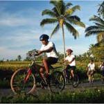 ubud_cycling