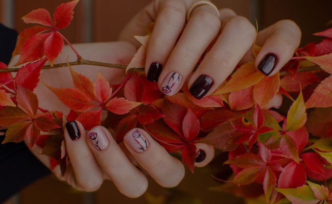 Nail Spa Salon 21108 21044 Bliss Nail Spa Of Millersville Md Columbia Md Manicures