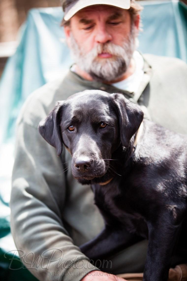Webber-Dogs-5531
