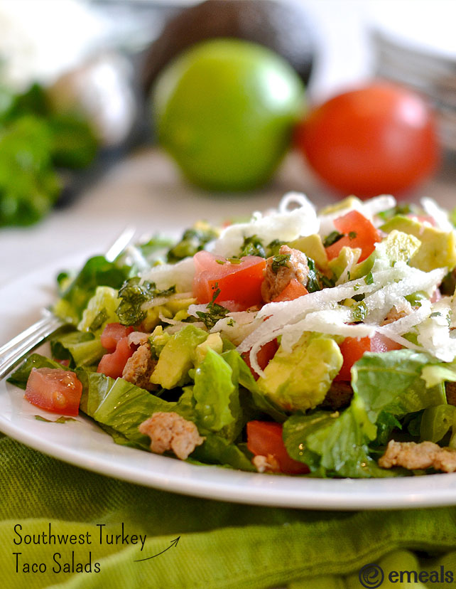 Paleo Southwestern-Flavored Ground Beef or Turkey for Tacos & Salad
