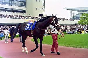 【競馬】 フジヤマケンザンよりも和風テイスト感の強い馬名ってあるの?
