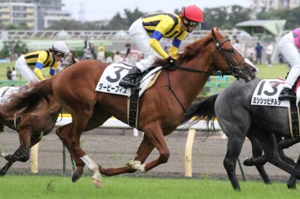 【競馬】 ダービーフィズ劇的開花!小島太師「春とは別馬」「こんな馬が3000メートルで走るんだよ」/菊花賞