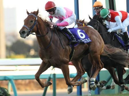 【競馬】 アジアエクスプレス、ダート戦線へ 手塚調教師「もう戻していいでしょう」