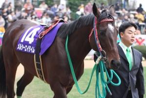 【競馬】 メルシーエイタイムが死亡 2007年 中山大障害(J.G1)勝ち馬