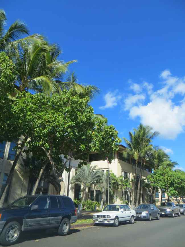 ハワイ運転免許路上試験
