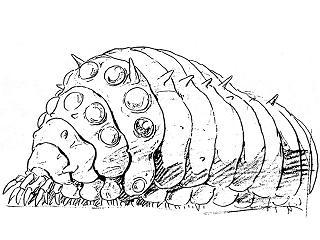 ダムで外来植物が異常発生→ガの幼虫が葉を食べ尽くす→幼虫を魚が食べ尽くす→景観回復ヨッシャアア