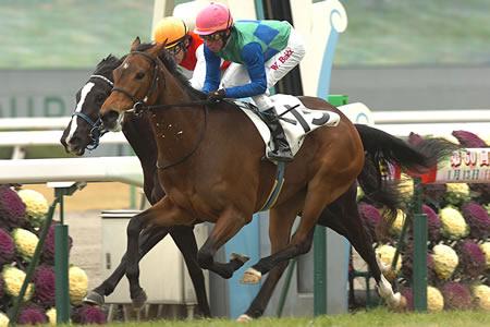 ディープインパクト半妹・トーセンソレイユ(父ネオユニヴァース)がデビュー勝ち/京都6R 3歳新馬[01/13]