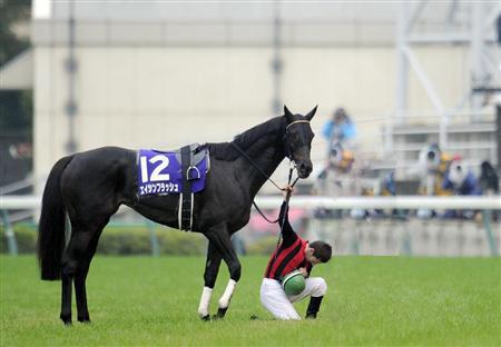 ■ 心に残ってるエイシンの馬 ■