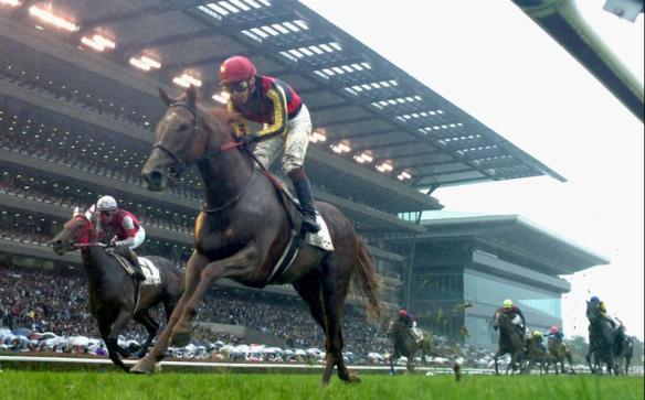 昨年の凱旋門賞2着馬オルフェーヴル、天皇賞・春には出走せず ドバイ遠征か大阪杯から宝塚記念へ