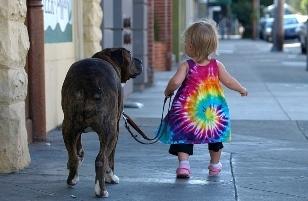 彼女「映画にもなった、『ホームレスのおっさんが犬と氏ぬ話』が絶対感動するよ!!!」