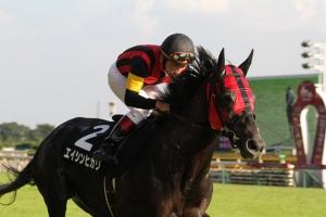 【競馬】 エイシンヒカリ、初年度種付料250万円