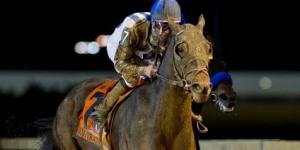 【競馬】 チャンピオンズCに米国馬インペラティヴが参戦