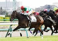 【競馬】 2歳牝馬・ピンクブーケから禁止薬物が検出 失格処分に