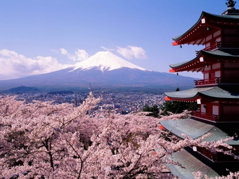 fuji-japan-cherry-blossoms.jpg