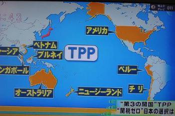 正直TPP参加したら日本どうなるの?