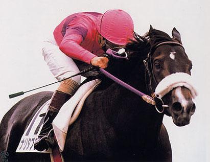 【競馬】 名馬の長所を出し合って最強の生命体を作ろう