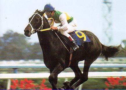 【競馬】 ルドルフ「三冠馬で一頭だけ雑魚がいまーすwwww」