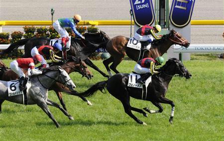 【競馬】 なぜディープブリランテ世代は印象が微妙なのか?