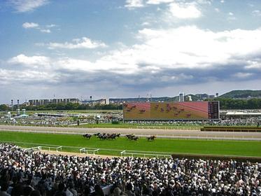 【競馬】 日本の競馬ってスポーツの中では何番目に人気あるの?