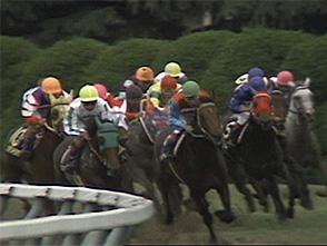 【競馬】 名前だけG1級の馬