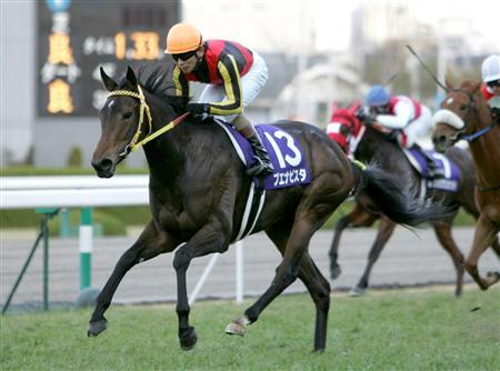 【競馬】 1番人気で負けた回数が1番多い中央馬ってどいつ?